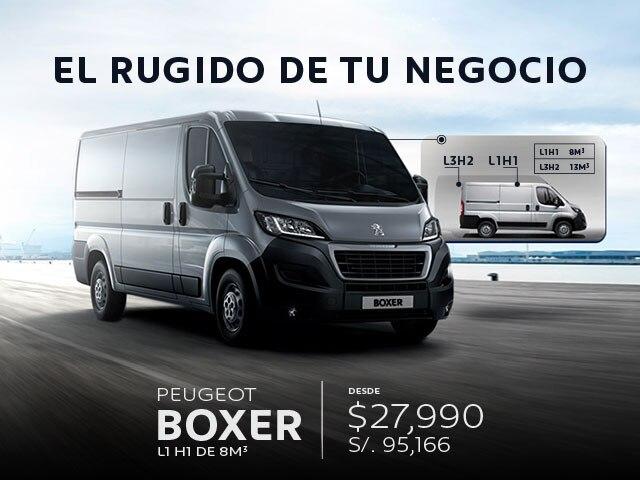 boxer mobile